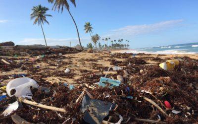 Trash Walk – Bambu Indah Hotel Ubud